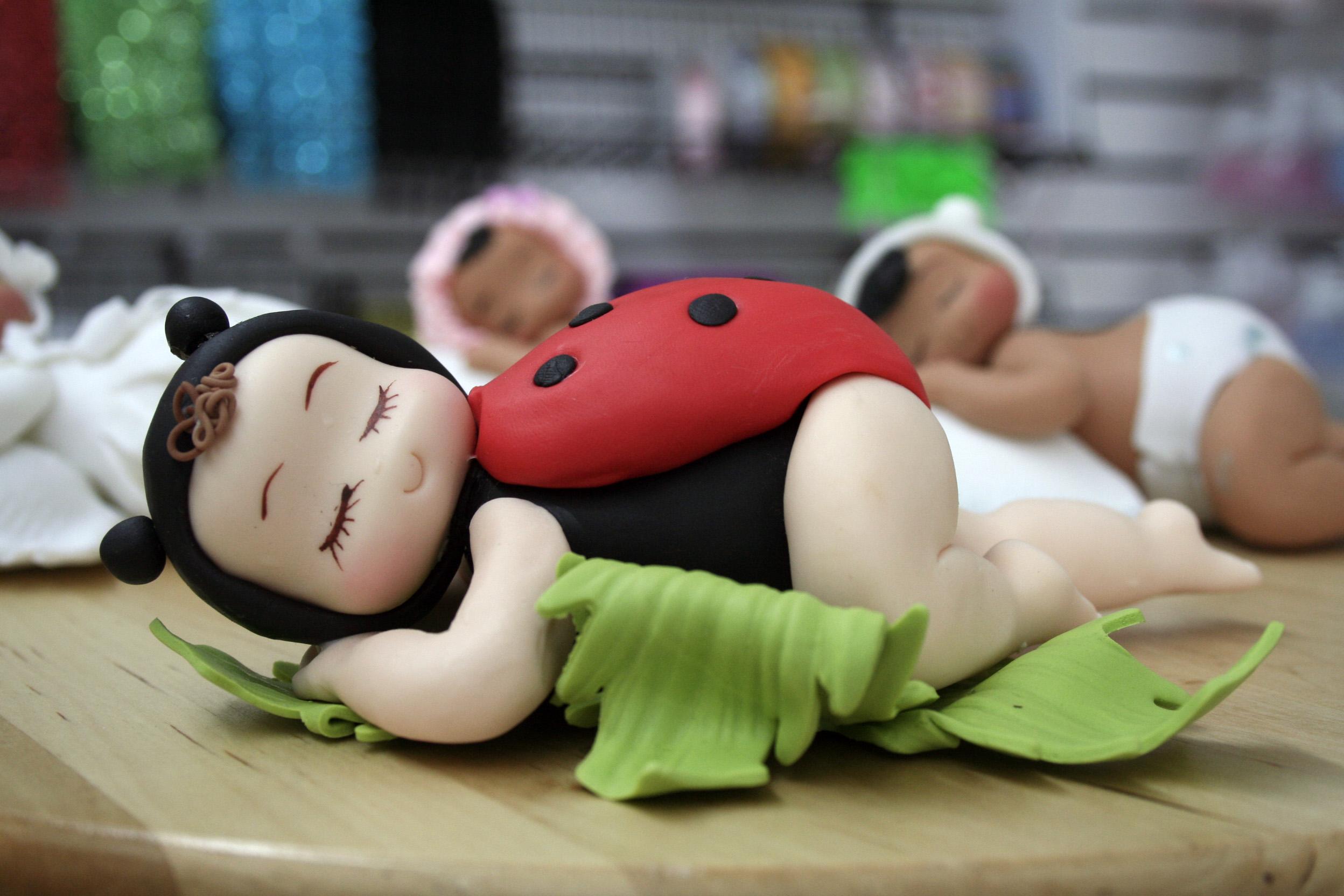 Ladybug Cake Decorating Supplies